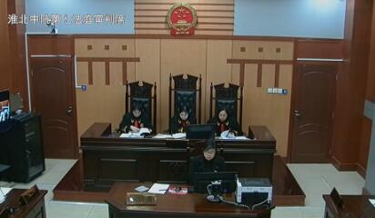 生命权纠纷 (2017)皖06民终36号