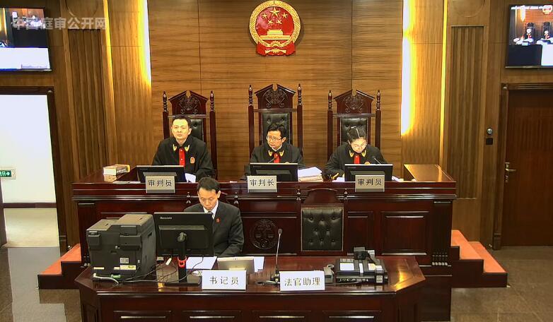 其他合同纠纷 (2017)最高法民终872号
